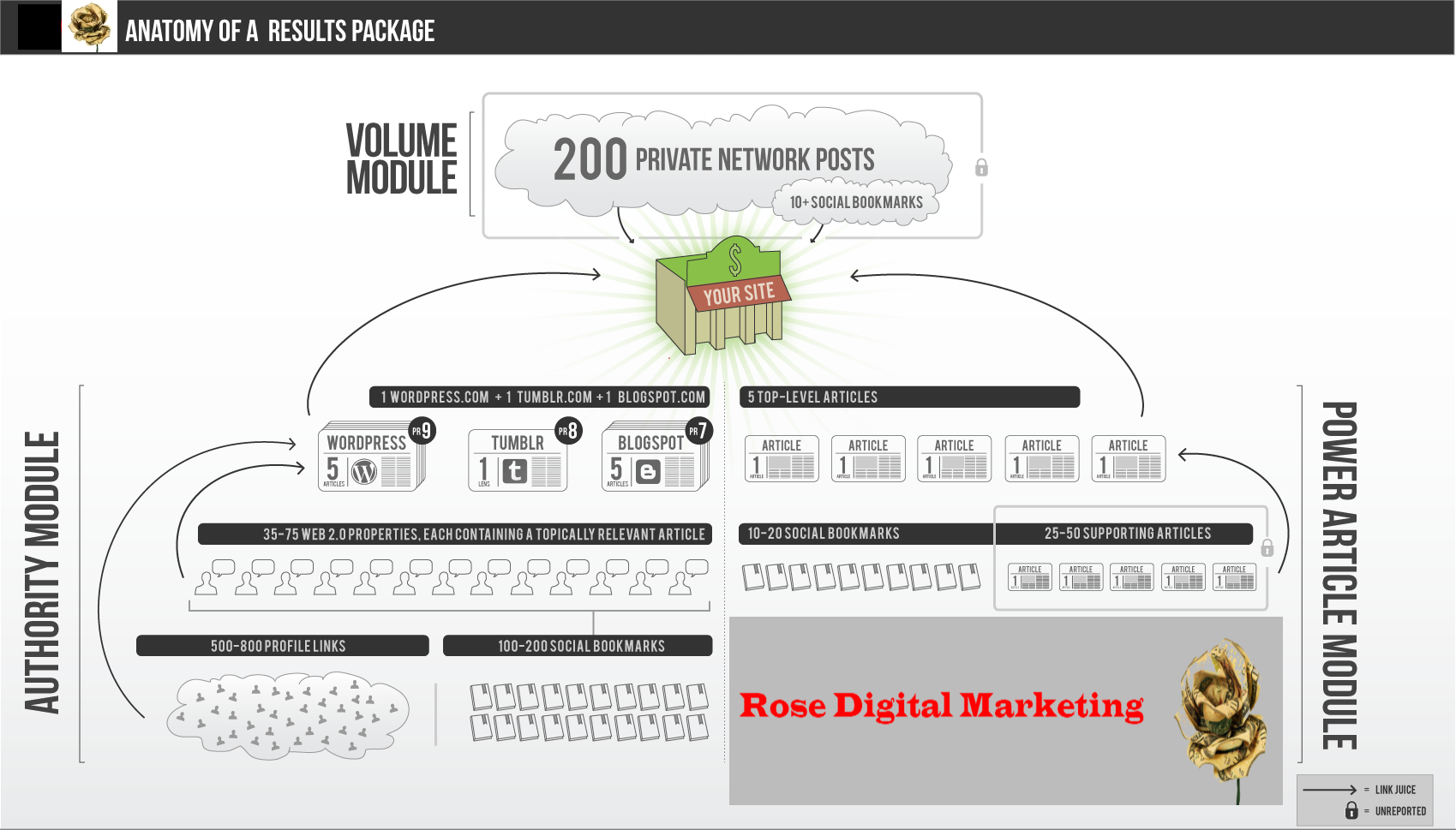image of RDM SEO infographic